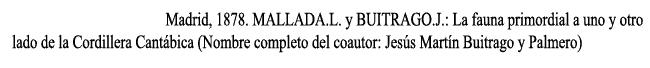 luis-mallada